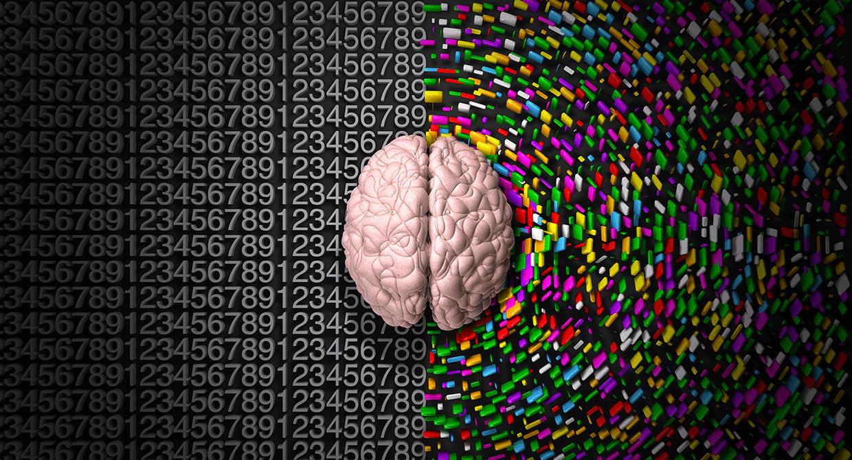 Sağ Beyin ve Sol Beyin İçin 8 Aktivite